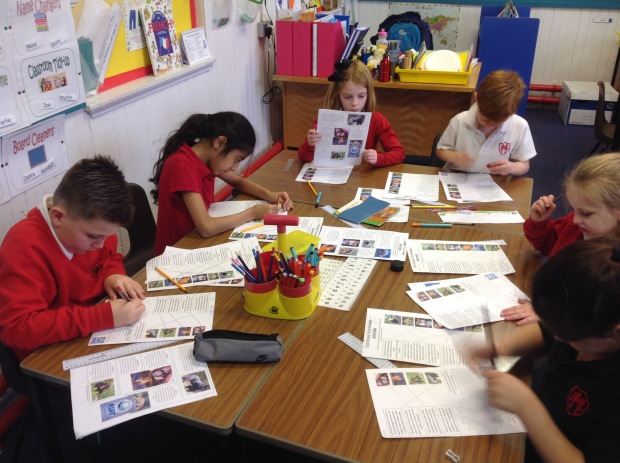 Learning about rainforest animals