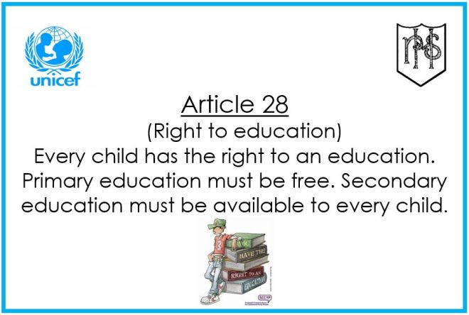 Article 28